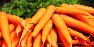 zanahoria-portada